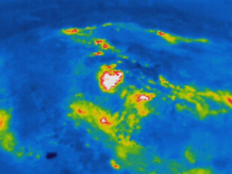 Thermal Image of Fire